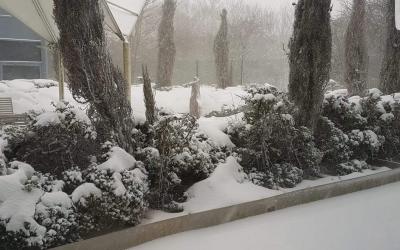 IT'S SNOW SO QUIET AT NOVUS PETERLEE